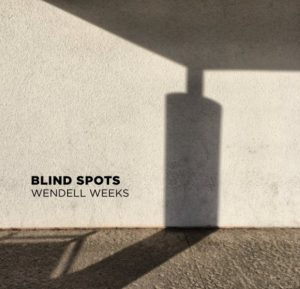 Blind Spots Book Cover